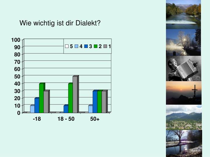 Wie wichtig ist dir Dialekt?