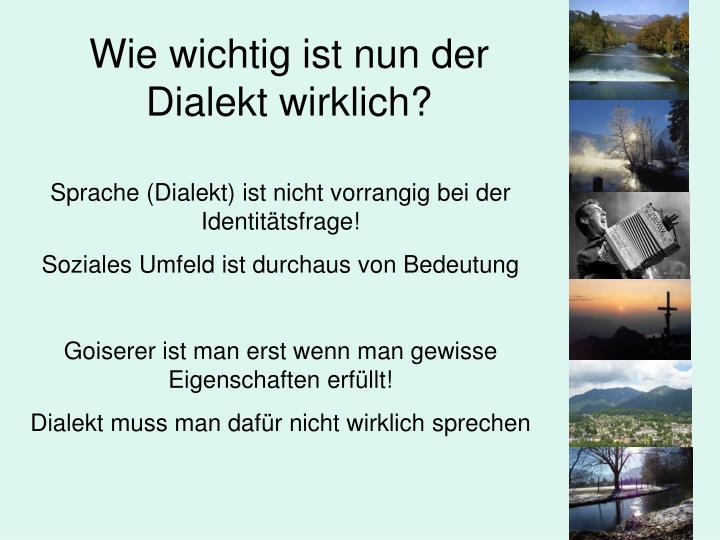 Wie wichtig ist nun der Dialekt wirklich?