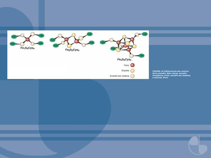 FIGURA 14.32Estruturas dos centros ferro-enxofre. Bem claras, enxofre inorgânico; cinza, enxofre em cisteína; e escuras, ferro.