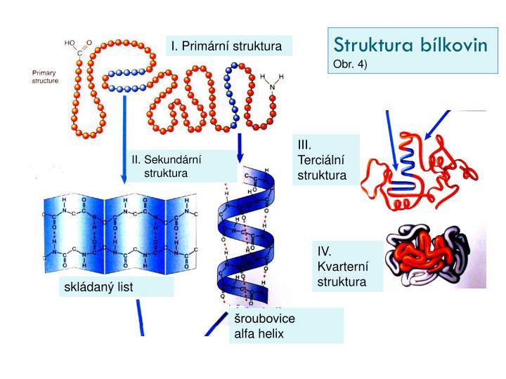 Struktura bílkovin