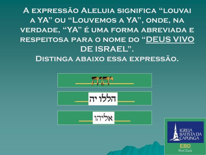 """A expressão Aleluia significa """"louvai a YA"""" ou """"Louvemos a YA"""", onde, na verdade, """"YA"""" é uma forma abreviada e respeitosa para o nome do """""""