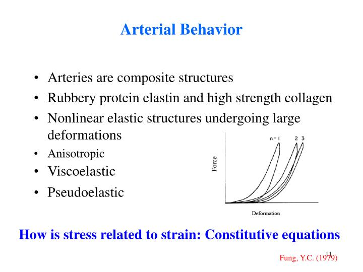 Arterial Behavior