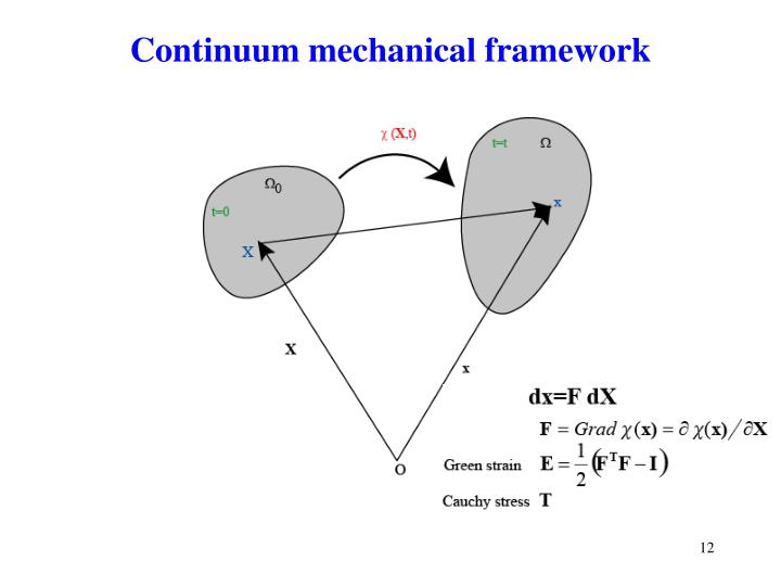 Continuum mechanical framework