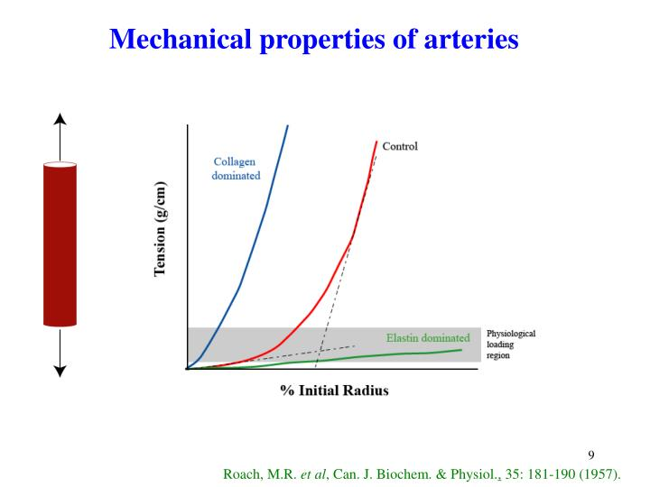 Mechanical properties of arteries