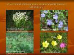 in v znamn rastlinn druhy chr nen pod a z kona 543 2002 z z