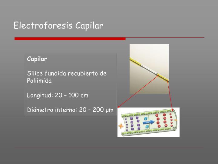 Electroforesis Capilar