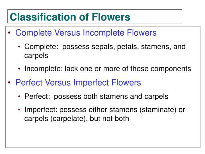 Complete Versus Incomplete Flowers