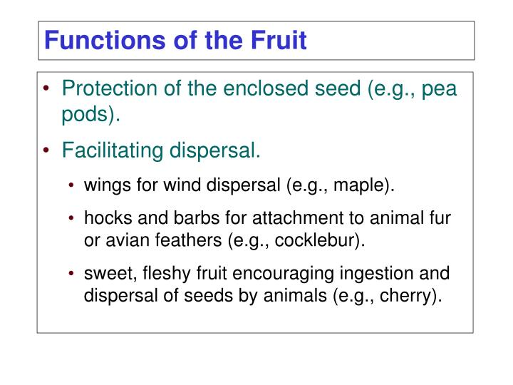 Protection of the enclosed seed (e.g., pea pods).