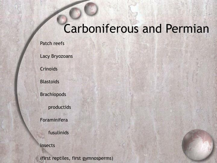Carboniferous and Permian