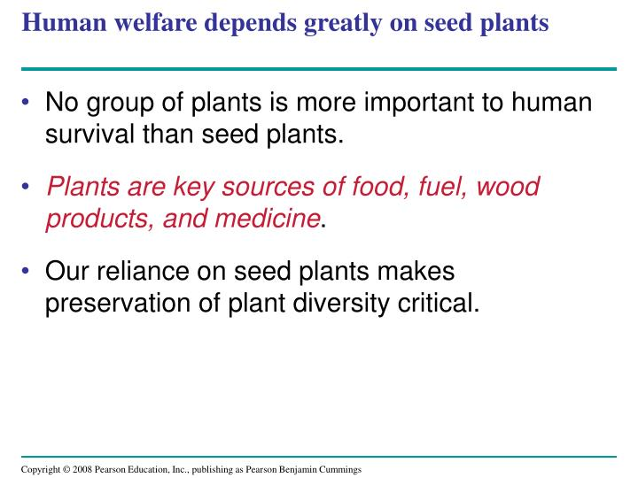 Human welfare depends greatly on seed plants