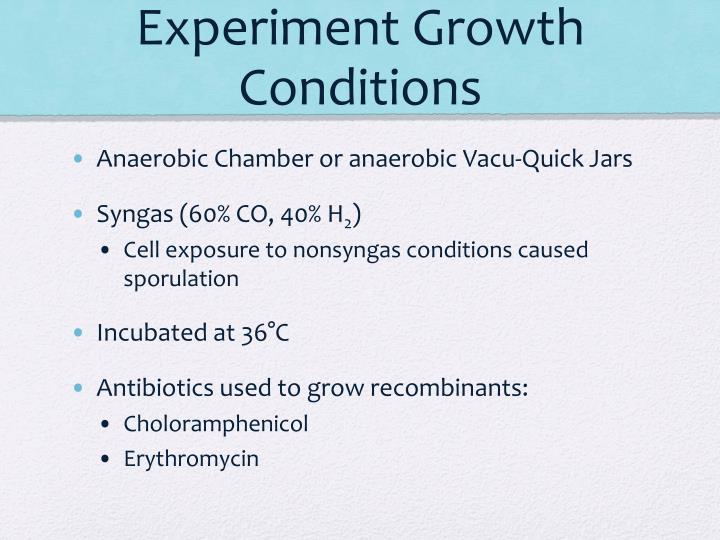 Experiment Growth Conditions