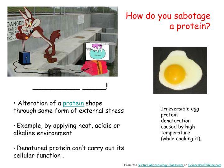 How do you sabotage