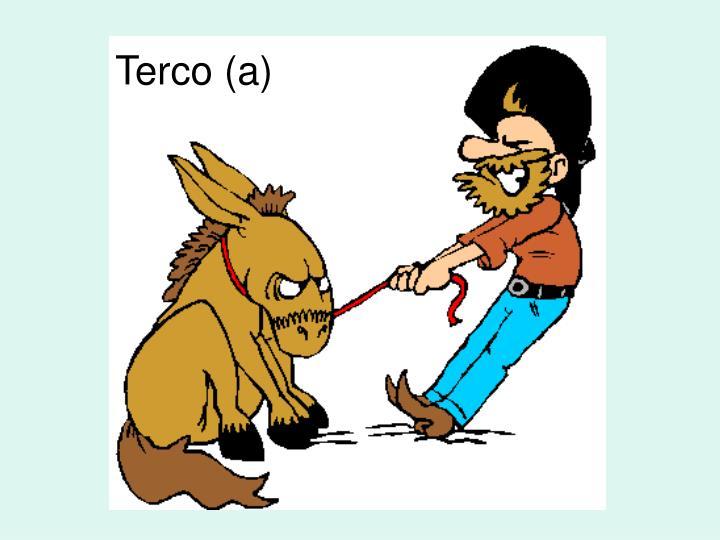 Terco (a)