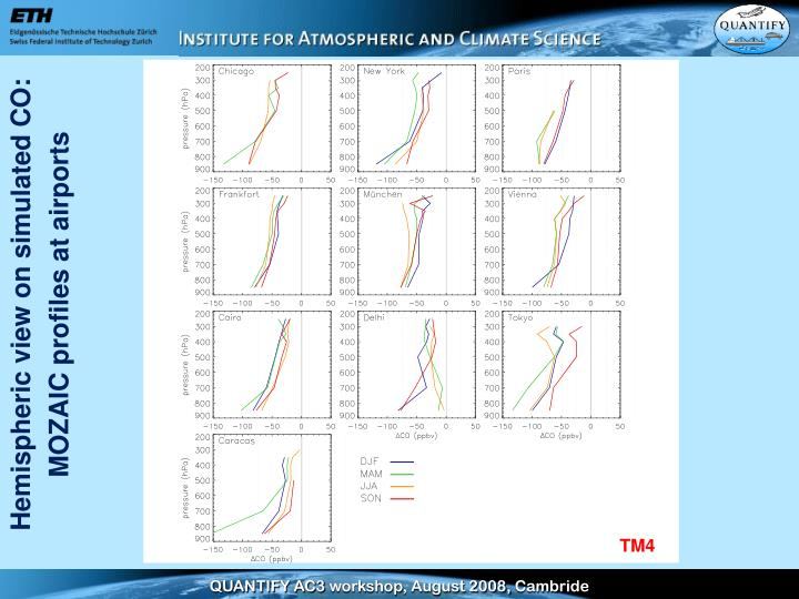 Hemispheric view on simulated CO: