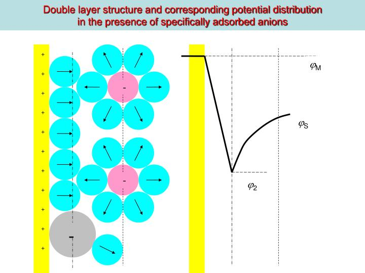 Double layer structure and corresponding potential distribution
