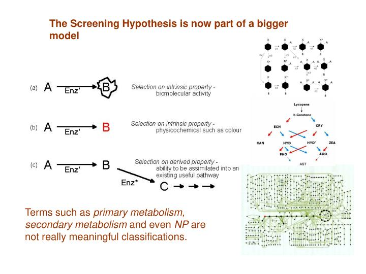 The Screening Hypothesis is now part of a bigger model