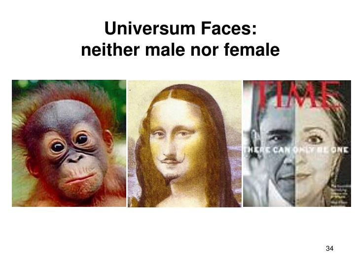 Universum Faces: