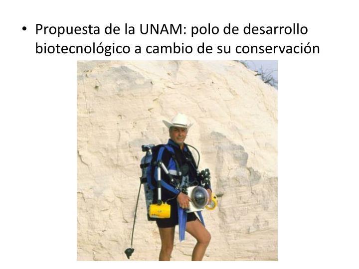 Propuesta de la UNAM: polo