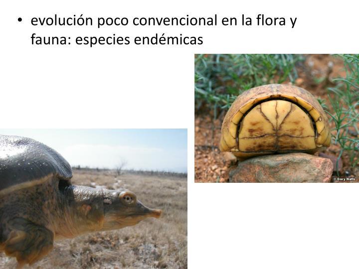 evolución poco convencional en la flora y