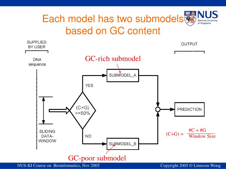 GC-rich submodel