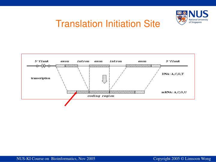 Translation Initiation Site