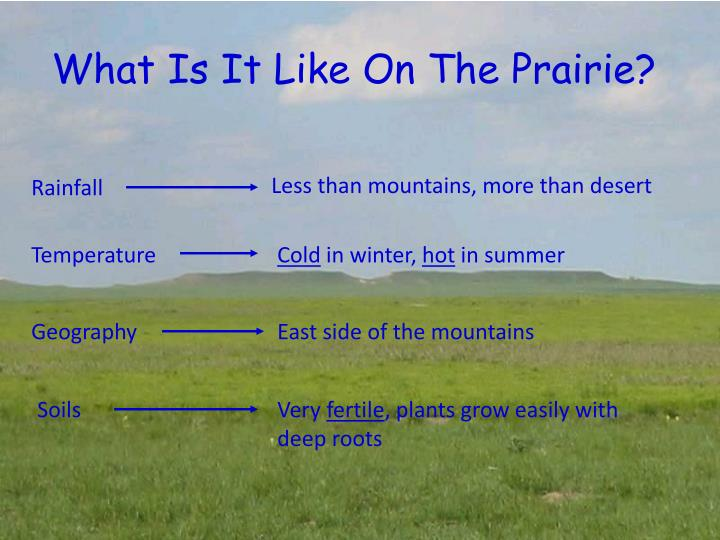 What Is It Like On The Prairie?