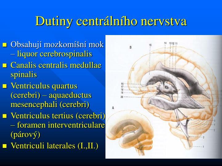 Dutiny centrálního nervstva