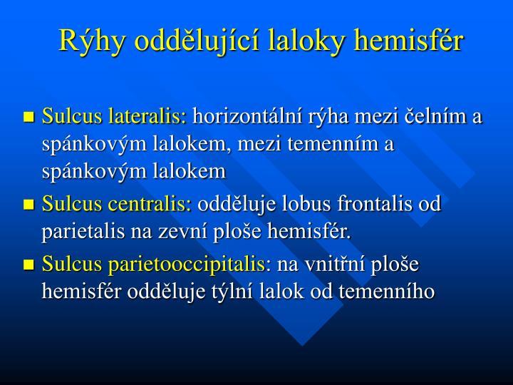 Rýhy oddělující laloky hemisfér