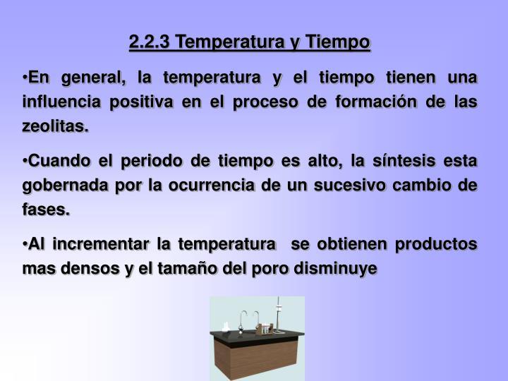 2.2.3 Temperatura y Tiempo