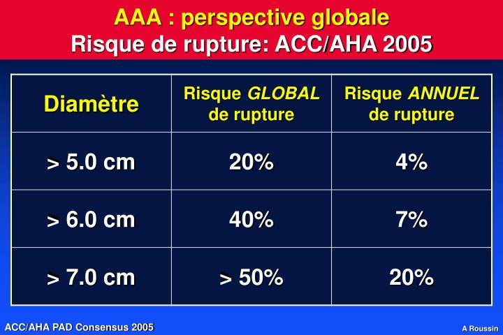 AAA : perspective globale