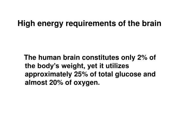 High energy requirements of the brain