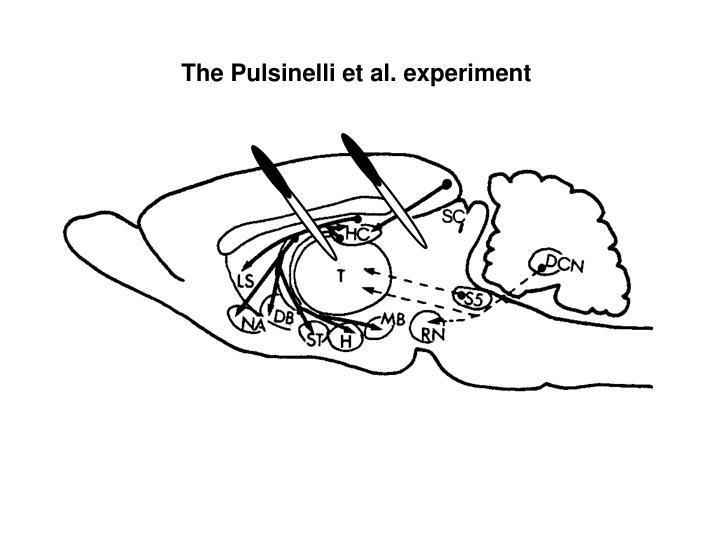 The Pulsinelli et al. experiment