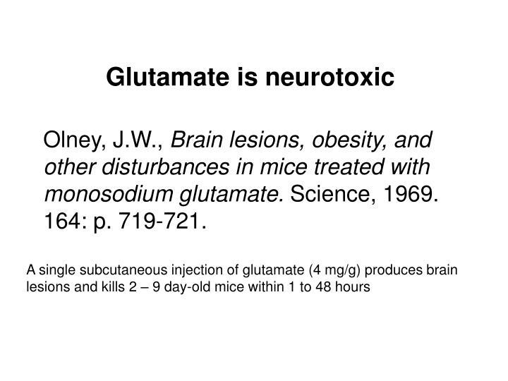 Glutamate is neurotoxic