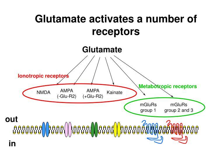 Ionotropic receptors