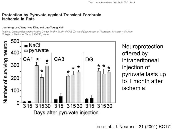 Neuroprotection offered by intraperitoneal injection of pyruvate lasts up to 1 month after ischemia!
