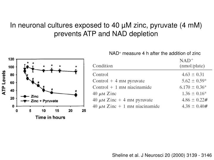In neuronal cultures exposed to 40 µM zinc, pyruvate (4 mM) prevents ATP and NAD depletion