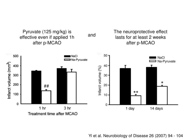 The neuroprotective effect lasts for at least 2 weeks after p-MCAO