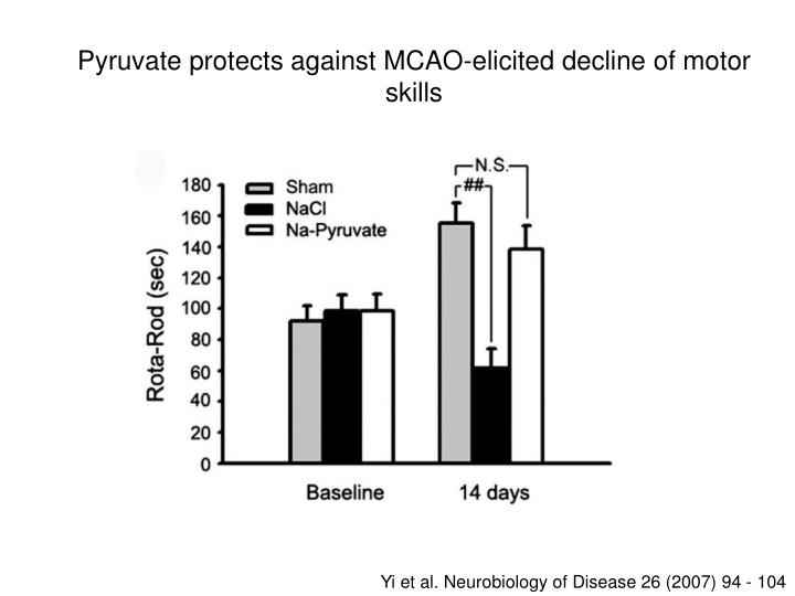Pyruvate protects against MCAO-elicited decline of motor skills