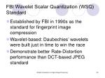 fbi wavelet scalar quantization wsq standard