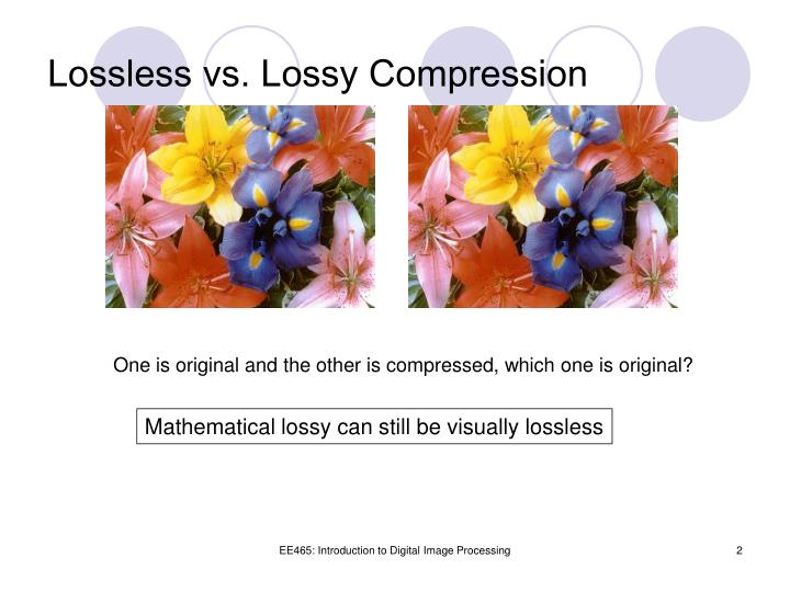 Lossless vs. Lossy Compression