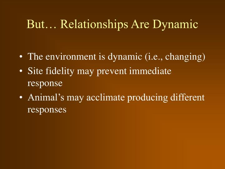 But… Relationships Are Dynamic