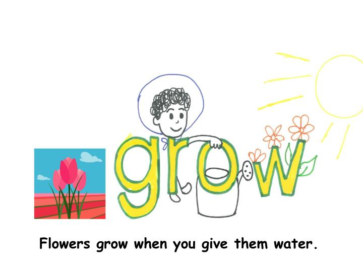 Flowers grow when you give them water.