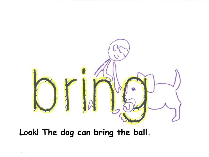 Look! The dog can bring the ball.