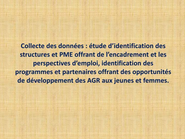Collecte des données : étude d'identification des structures et PME offrant de l'encadrement et les perspectives d'emploi, identification des programmes et partenaires offrant des opportunités de développement des AGR aux jeunes et femmes.