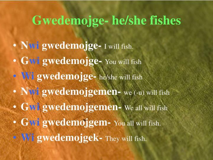 Gwedemojge- he/she fishes