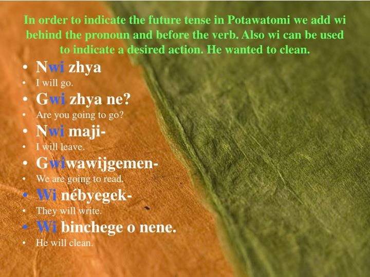 In order to indicate the future tense in Potawatomi we add wi behind the pronoun and before the verb. Also wi can be used to indicate a desired action. He wanted to clean.