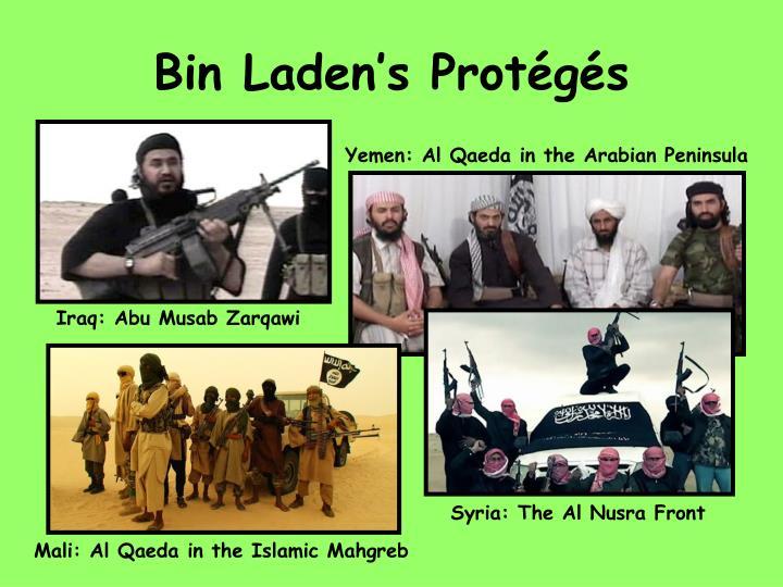 Bin Laden's Protégés