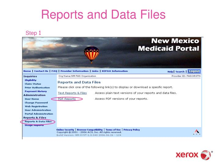 Reports and Data Files