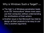 why is windows such a target cont