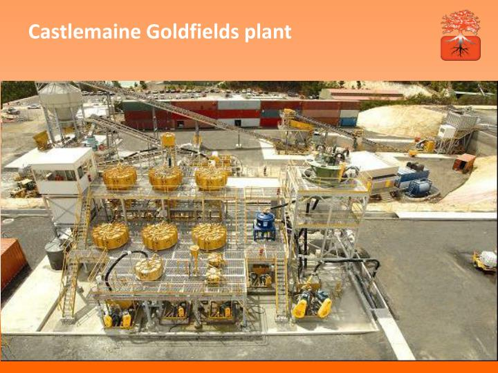 Castlemaine Goldfields plant